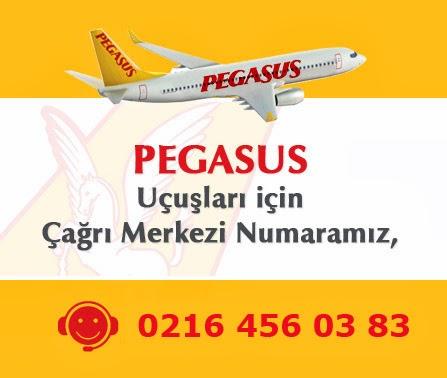 Pegasus Bilet Hattı