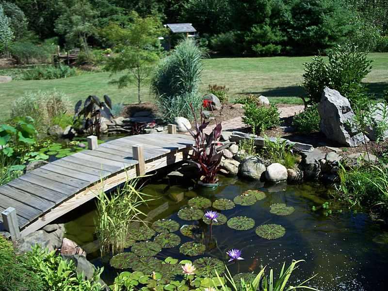 Two men and a little farm inspiration thursday for Fish pond bridges