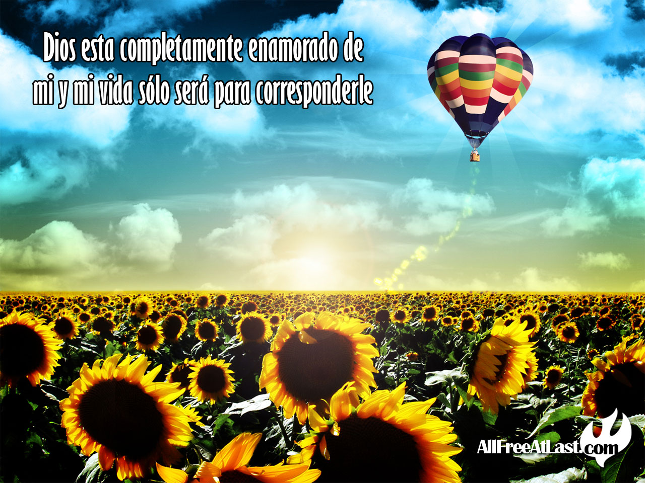 Sunflowers and Hot Air Balloon