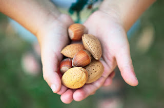 health nut nutritional facts