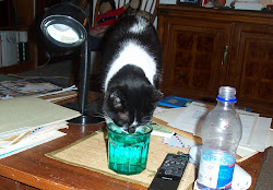 Trouble & Her Water Glass