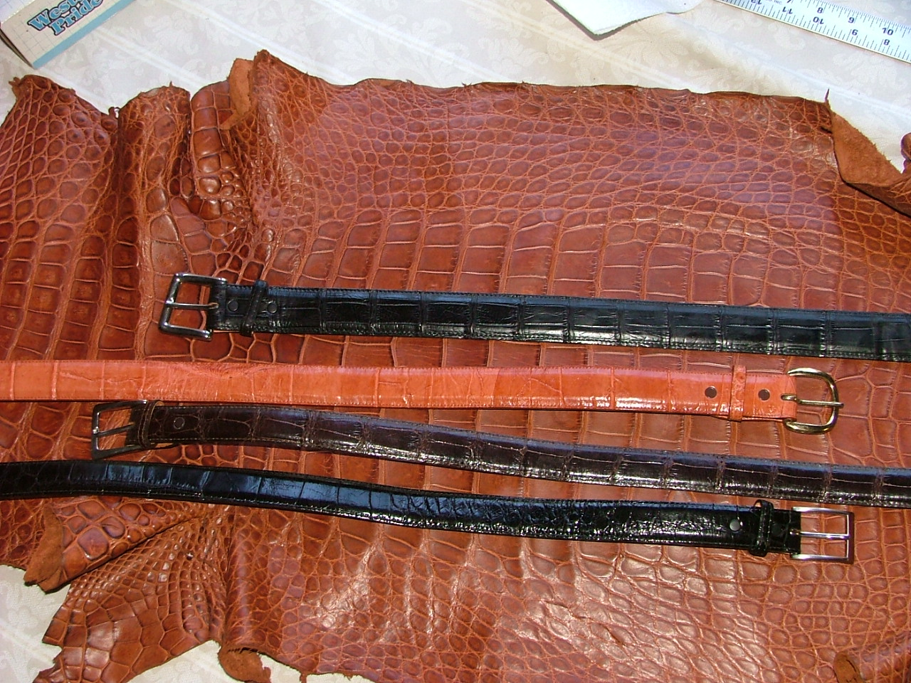 American Alligator Leather 101 Why Genuine Gator Products