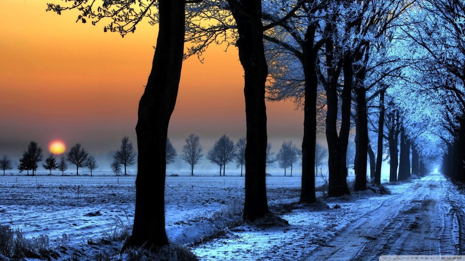 http://4.bp.blogspot.com/-ctMItMumPaY/T6QntlHDpeI/AAAAAAAAAOQ/NaQUrfiUs20/s1600/hd-nature-winter-sun-set-high-wallpapers-background.jpg