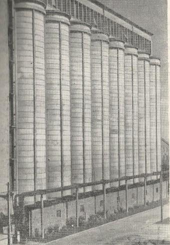 Zakłady Tłuszczowe w Kruszwicy 1956 r.