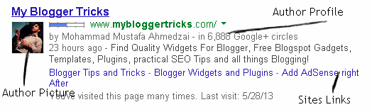 How to give a professional look of your blog on search result?