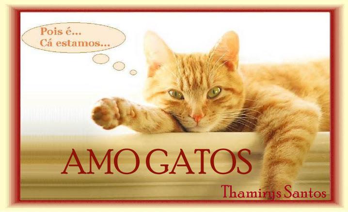 Frases Engracadas Boa Noite Homens Gatos Wwwpicsbudcom