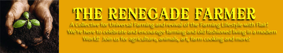 The Renegade Farmer