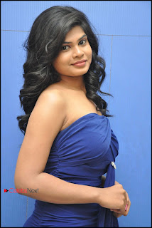 Actress Alekhya Pictures at Mr.Money Movie Audio Release Function  0020.jpg