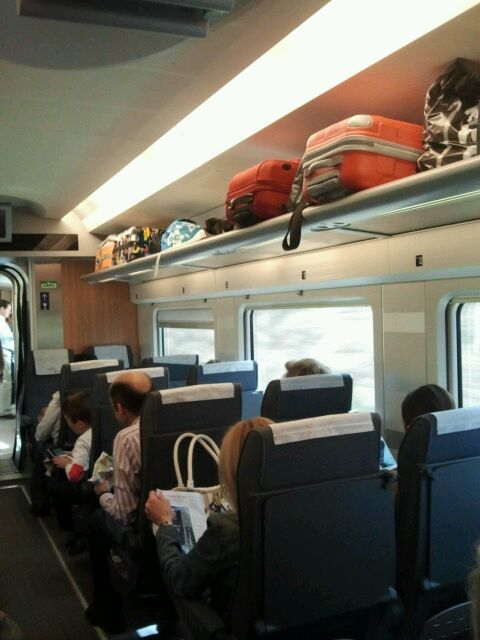ave train compartment luggage的圖片搜尋結果