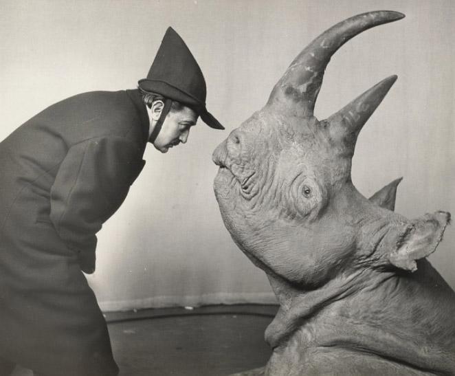 Salvador+dali+rhinoceros