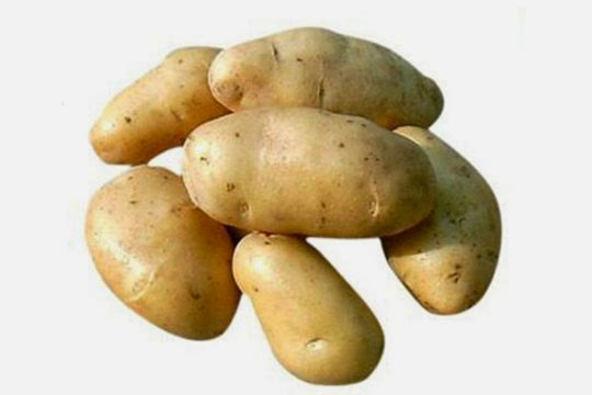 Potato for Eye Conjunctivitis treatment