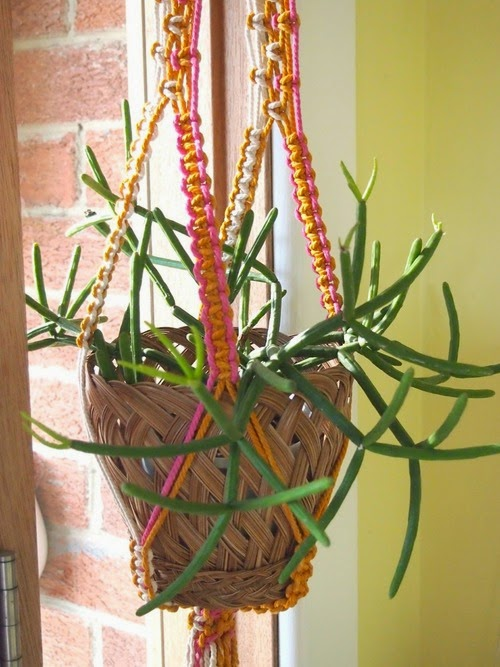 green,vert,monday,macramé,déco,plantes grasses,plantes vertes