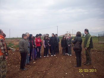 ΔΕΝΔΡΟΦΥΤΕΥΣΗ 2011