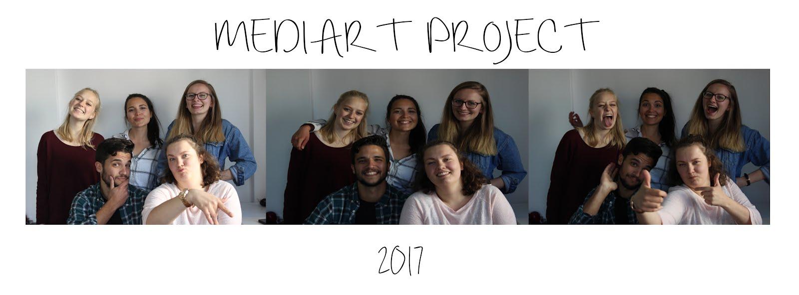 MediArt 2017