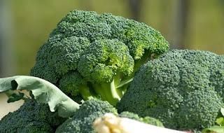 Manfaat Sayur Brokoli Hijau Untuk Tubuh