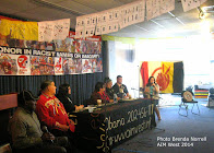 American Indian Movement: Sacred lands, mascots, US sterilization