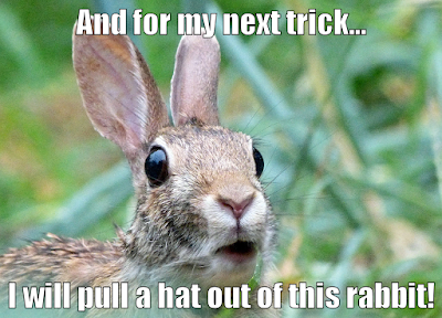 Pulling a hat out of a rabbit