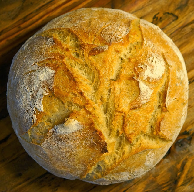 Roman-style Chicken, Rosemary Basic No-Knead Bread.,