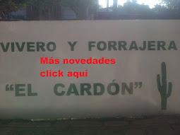 """""""El Cardón"""" - Vivero y forrajera de Fabián Masera"""