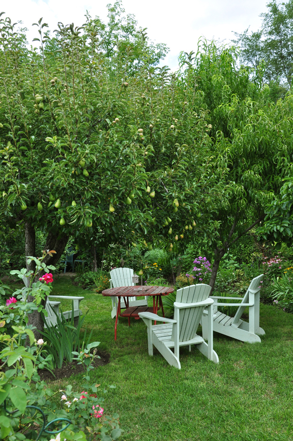 Three Dogs in a Garden: The Edible Gardens Learning Tour