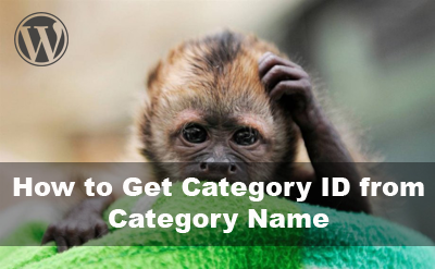 Category name by id