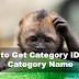 Get Category name by id - Wordpress snippets