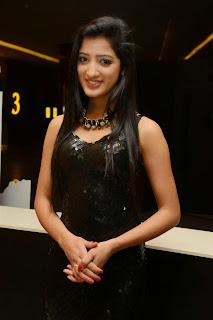 Richa Panai in Tight Latex Gown at Kavvintha Audio Releae Beuatiful Pics