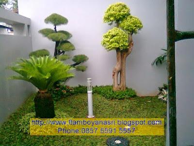 Tukang Taman Surabaya indah