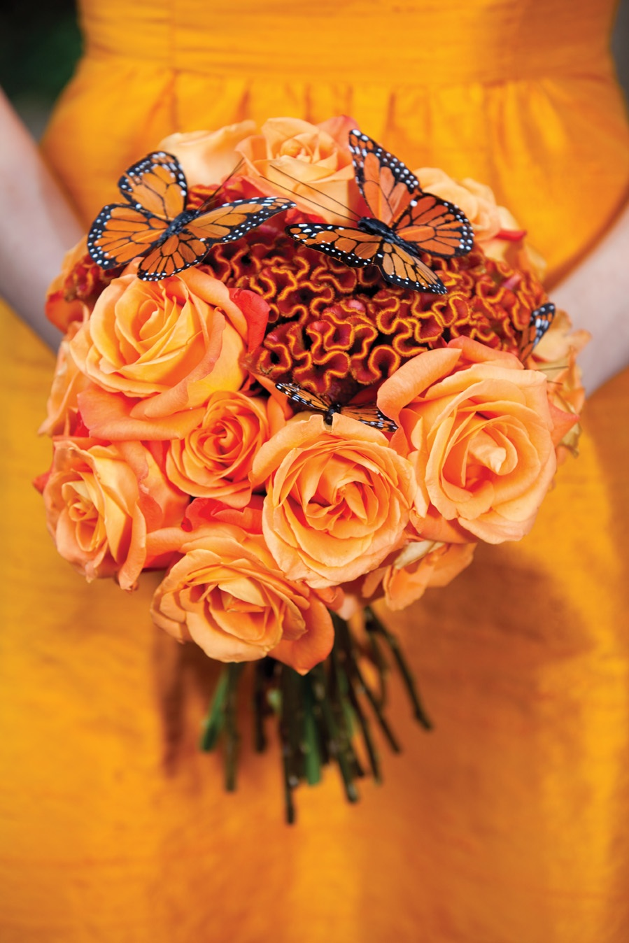 TANGERINE TANGO - 2012 PANTONE COLOR OF THE YEAR! | HOTHOUSE ...