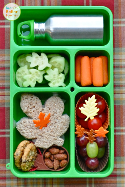 Fall foliage lunch in Go Green Lunchbox