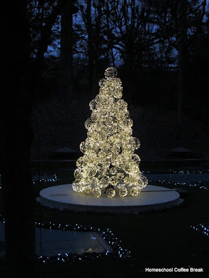floating Christmas tree - Christmas Lights  - A Longwood Gardens PhotoJournal - Part Two on Homeschool Coffee Break @ kympossibleblog.blogspot.com