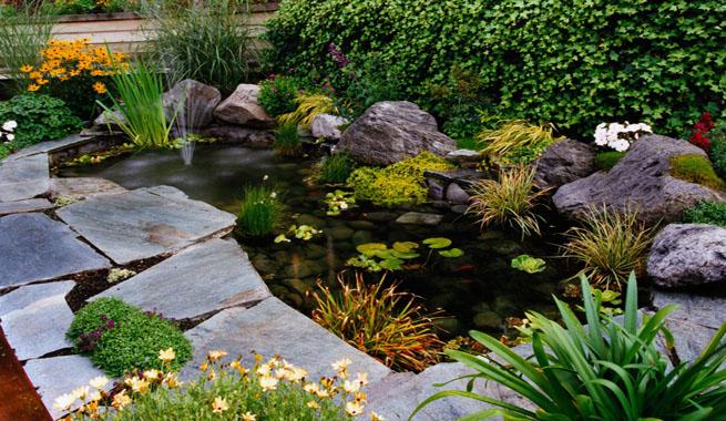 Arte y jardiner a problemas de las plantas acu ticas for Filtros para estanques pequenos