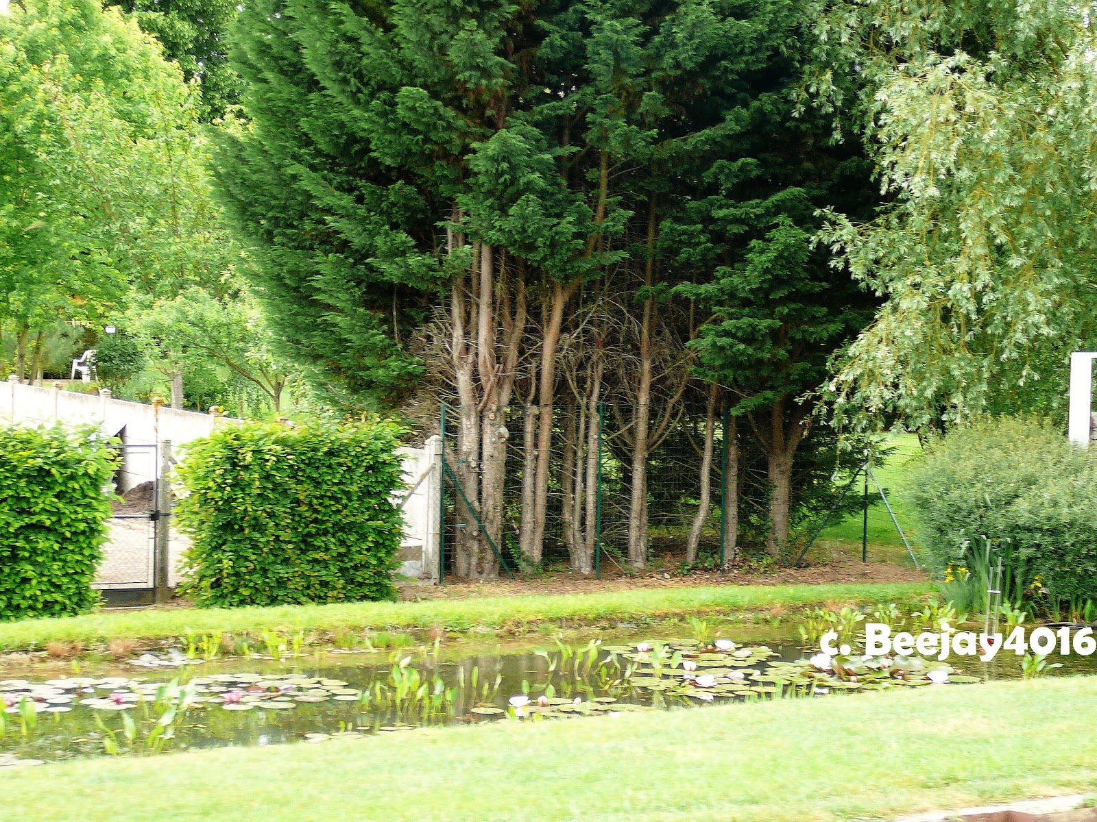 beejay 39 s travels france canal boat trip day 7 lere to chatillon sur loire. Black Bedroom Furniture Sets. Home Design Ideas