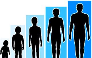 Cara+Alami+Meninggikan+Badan+Dengan+Cepat Cara Meninggikan Badan Dengan Cepat