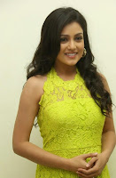 Actress Mishti Chakraborty Picture Gallery in Long Dress at Chinnadana Nee Kosam Audio Launch freshgallery.in4.jpg