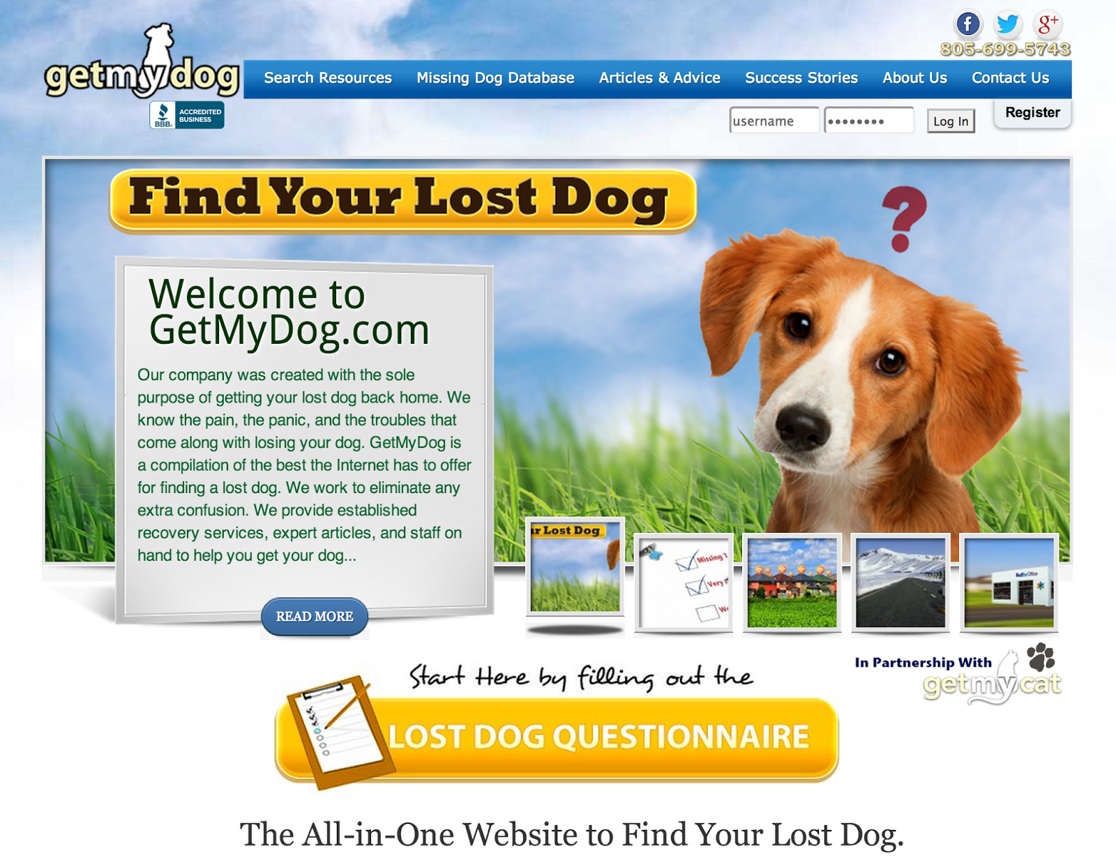 Search Lost Pets Missing in Your Community - petkey