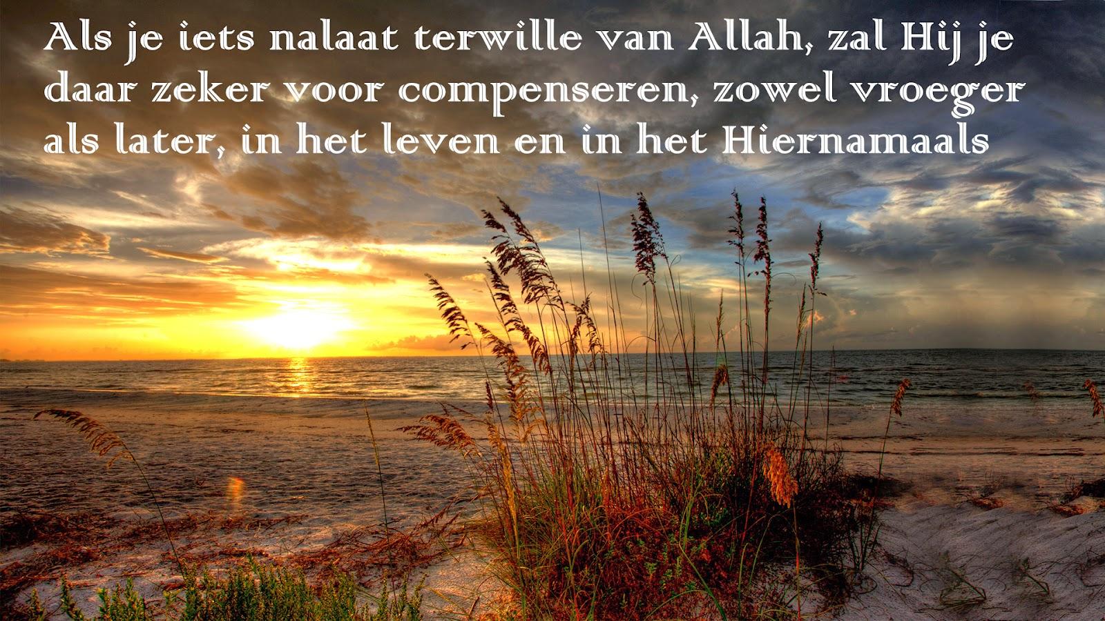 Citaten Uit Koran : Citaten en wijze woorden uit de islam allah zal je