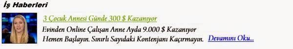 http://www.evdenisimkani.org/anket-param-evden-anket-doldurma-isi-ile-parakazan/.html