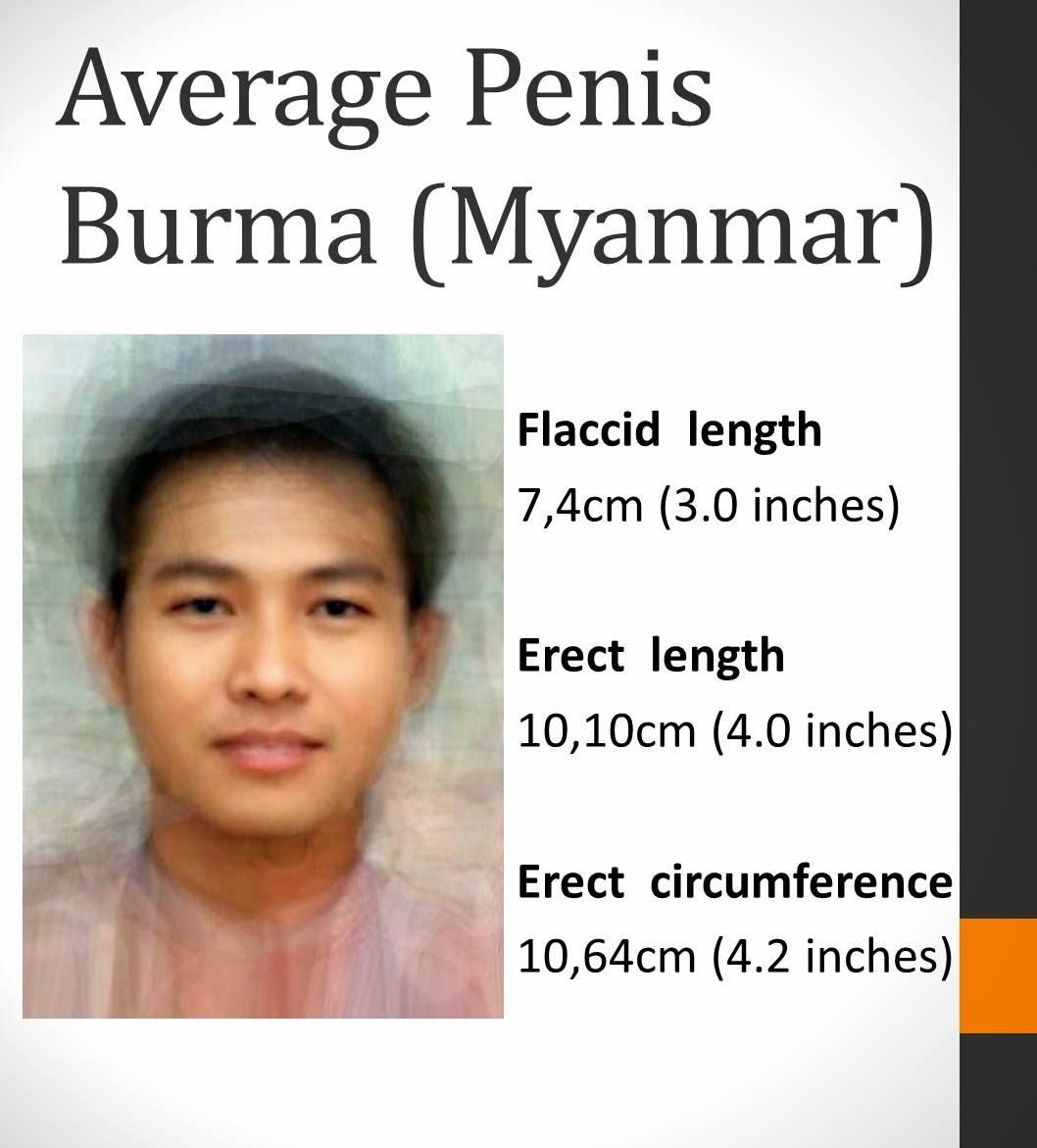 Average Penis Pictures 98