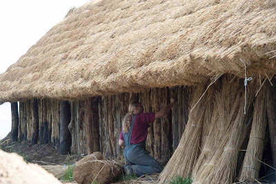 Neolithic settlement in Poland reconstructed