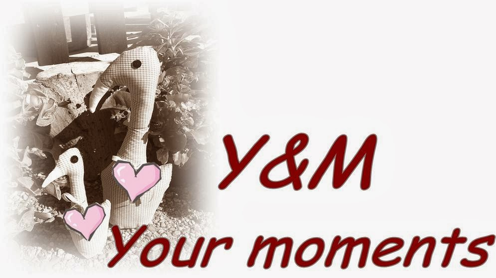 Y&M  Your moments