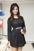 Shilpi Sharma latest dazzling Photos-thumbnail-14