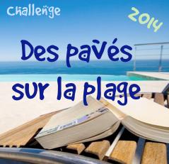 http://lecturienne.blogspot.fr/2014/07/des-paves-sur-la-plage-challenge-2014.html