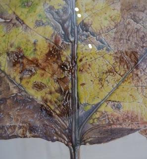 Rory McEwen Leaf
