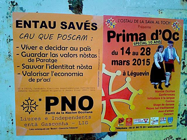 Entau Savès, Val de Save, élections départementales, Occitanie