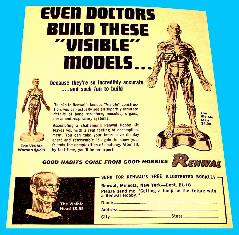 Scale Model News Renwal Classic Visible Man Kit Invisible