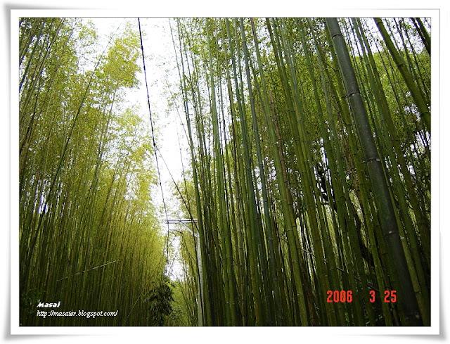 新竹六號花園3
