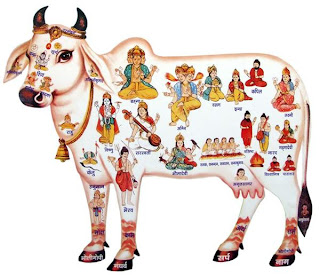 Vagh Baras – 1st Day Of Diwali – Vasu Baras
