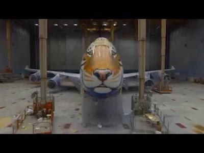 "В Ульяновске Boeing превратили в ""амурского тигра"""