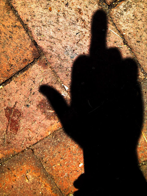 A shadow on bricks of a hand flipping the bird.